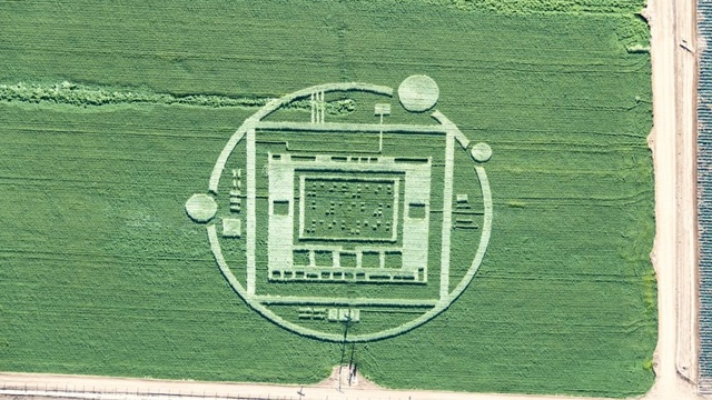 California-crop-circle-jpg